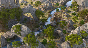 rock forest river 3D