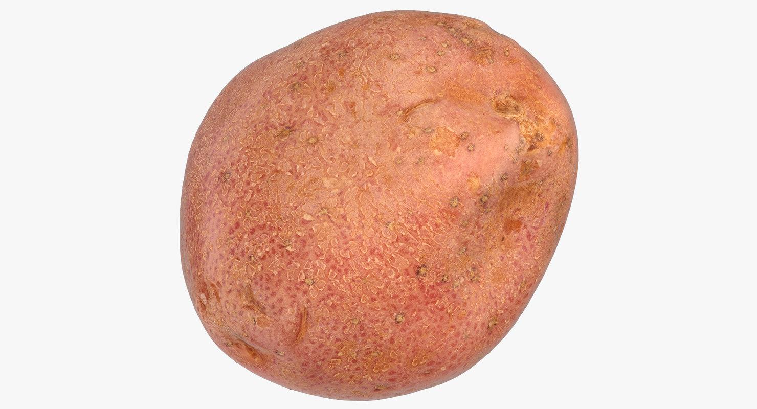 red potato 02 model