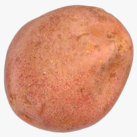 red potato 02 model