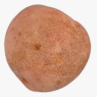 red potato 3D model