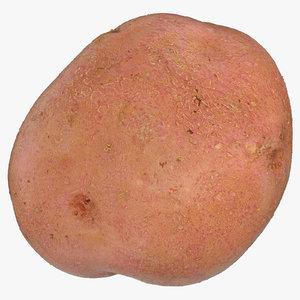 red potato 3D model