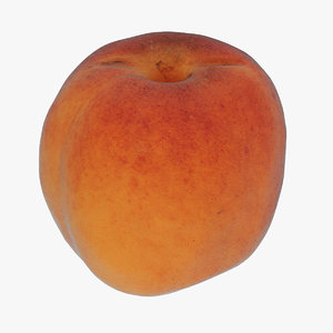 apricot fruit food 3D
