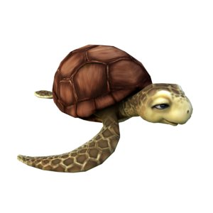 turtles animation 3D