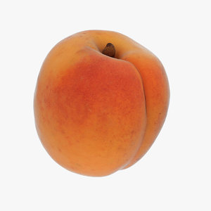 apricot model