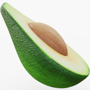 avocado seed model