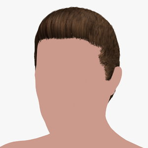 3D model hairstyle 30 hair