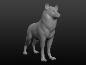 3D wolf base mesh