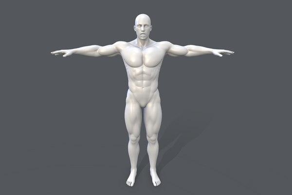 3D model male basemesh