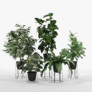 vase leaves 3D model