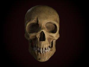 3D dirty skull pbr model