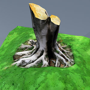 3D scanned tree real model