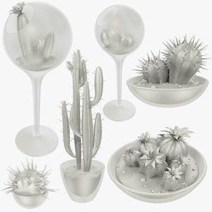 cactuses transparent pots cactus 3D