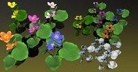 3D flower faroe