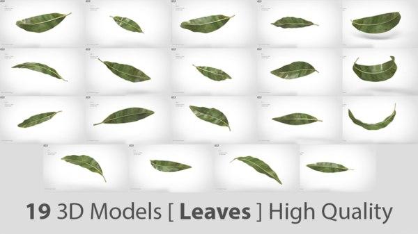3D green leaves - modeled model