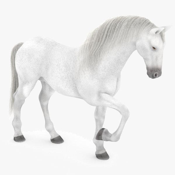 white horse rigged 3D model
