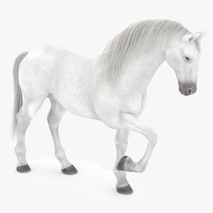 white horse rigged 3D model