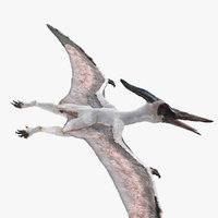 pterosaur pteranodon white fur model
