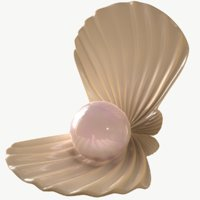 pearl shell 3D