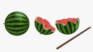watermelon split toon 3D model