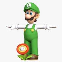 Luigi  Fire Flower Super Mario Bros Character