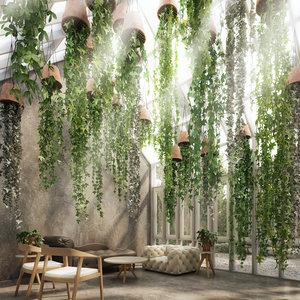 plant hanging 3D