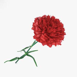 3D carnation flowers plant