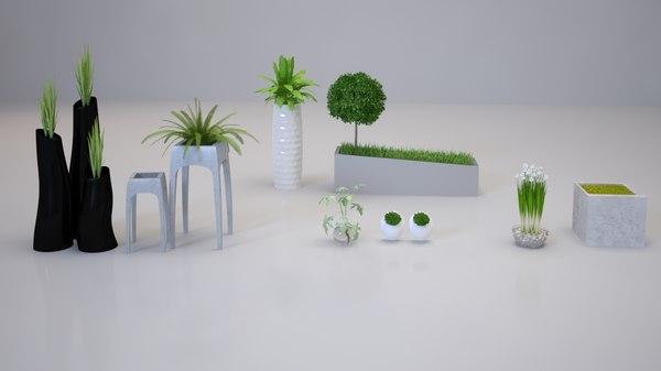 3D interior plants model