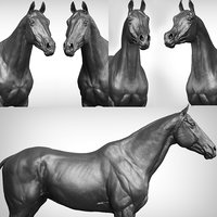 3D horse vfx zbrush ztl