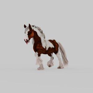 3D horse animation model