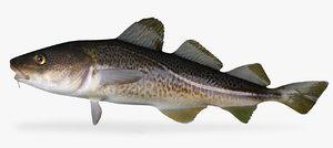 cod fish model