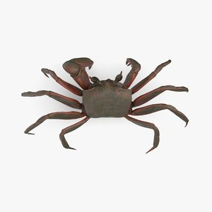 ghost crab 3D