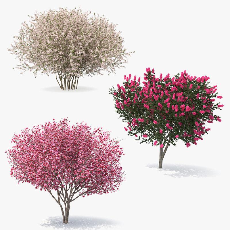 3D flowering bushes trees