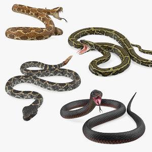 3D model snakes 2