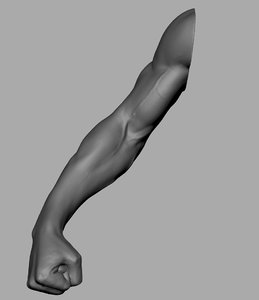 3D arm fist model