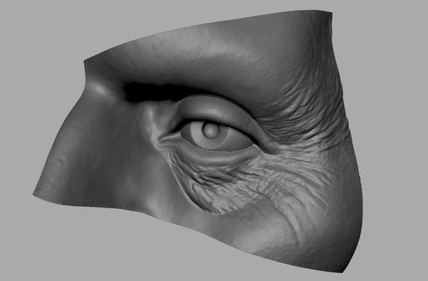 eye eyelids 3dprint 3D model