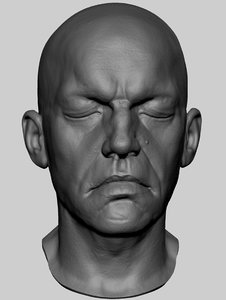 head 3dprint ztl 3D model