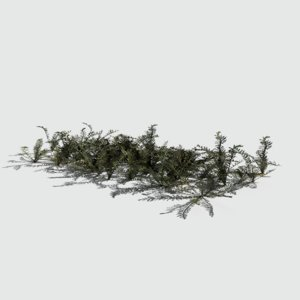 3D model bloodwort pack