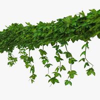ivy shrub 3D model