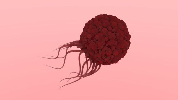 tumor blood vessel 3D model