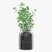 3D parsley glass jar