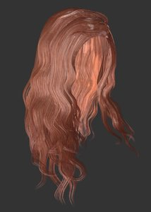 female hairstyle long hair model