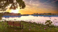 Sunset Bench Landscape