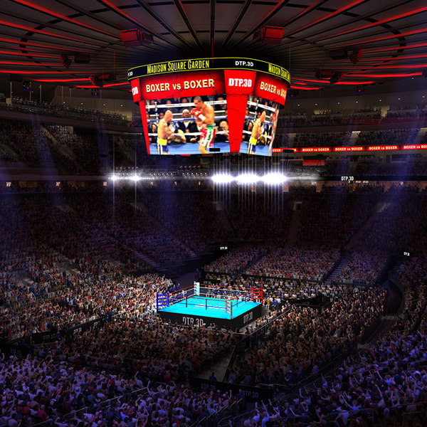 msg boxing arena audience 3D
