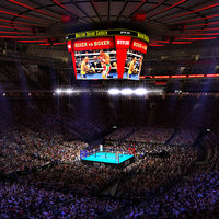 MSG Boxing Arena with Animated Audience