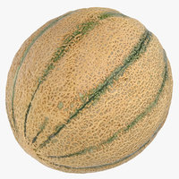 cantaloupe melon 01 3D model