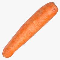 carrot 05 3D model