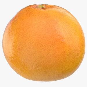 grapefruit 04 model