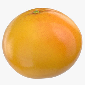 grapefruit 05 3D