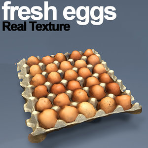 3D carton fresh eggs hd model