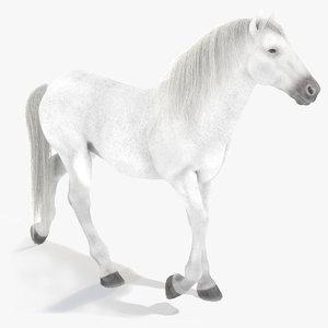 white horse 3D model